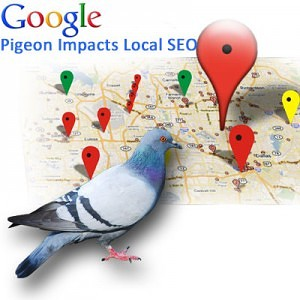 Google Pigeon Update Impact on Business